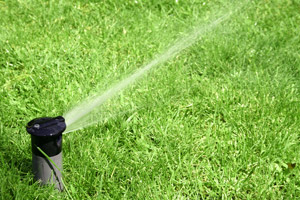 top rated Henderson Sprinkler Repair service